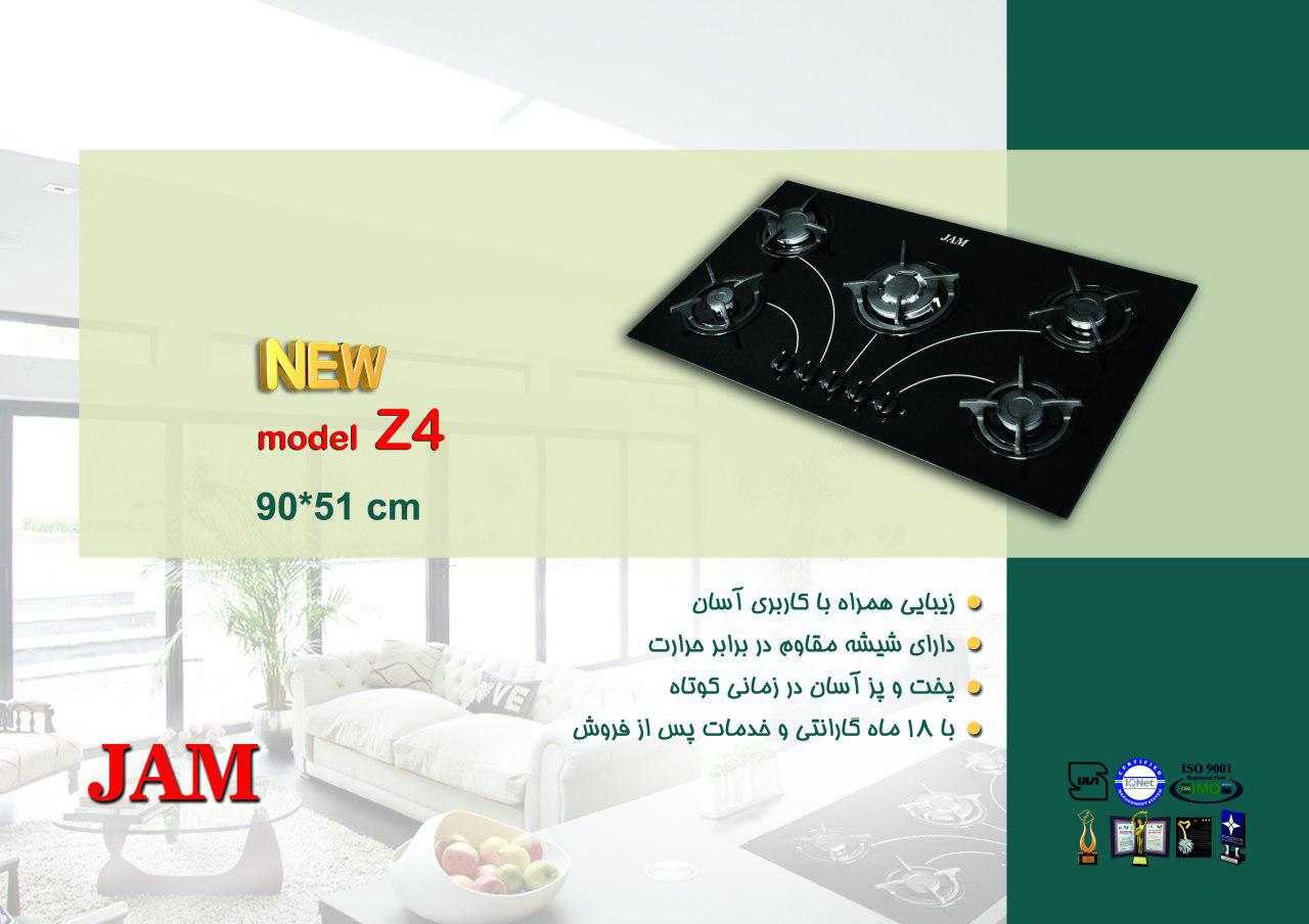 گاز Z4 اخوان